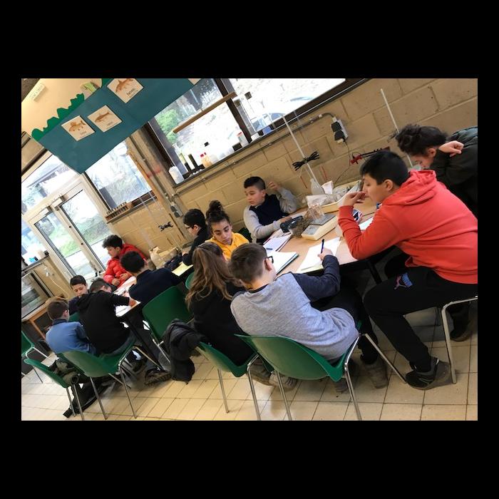 Classes de forêt - janvier 2018 - groupe 1 (jour 3)