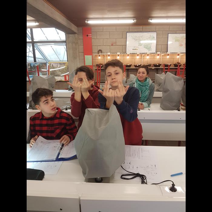 Classes de forêt - janvier 2018 - groupe 2 (jour 4)